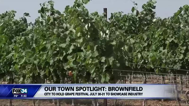 Our Town Brownfield Grape Festival