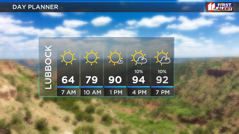 Hot and sunny, slight chance for an afternoon shower.