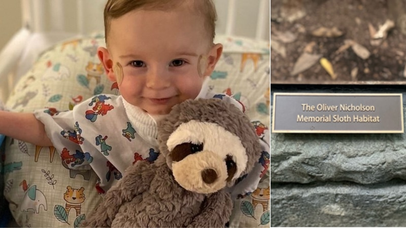 Oliver Nicholson was diagnosed with VACTERL association and died before he was 2. He loved...