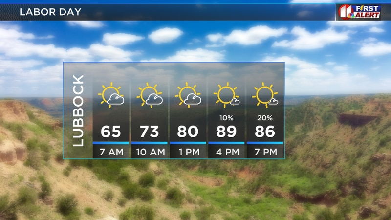 Mostly sunny and warm with a slim chance for an isolated, afternoon shower.